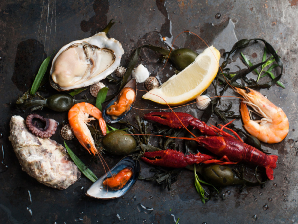 Delicious fresh seafood on dark vintage background, selective focus